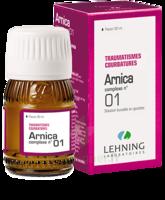 Lehning Arnica Complexe N° 1 Solution Buvable En Gouttes Fl/30ml à TARBES