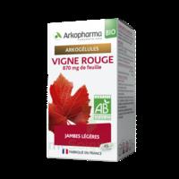 Arkogélules Vigne Rouge Bio Gélules Fl/45 à TARBES