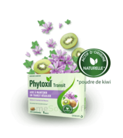 Phytoxil Transit Comprimés B/20 à TARBES