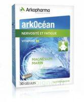 Arkocean Magnesium Marin Vitamine B6 Gélules Nervosité Fatigue B/30 à TARBES