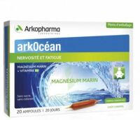 Arkocean Magnesium Marin Solution buvable caramel 20 Ampoules/10ml à TARBES
