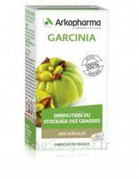 Arkogélules Garcinia Gélules Fl/45 à TARBES