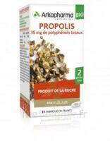 Arkogélules Propolis Bio Gélules Fl/45 à TARBES