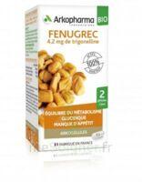Arkogélules Fenugrec Bio Gélules Fl/40 à TARBES
