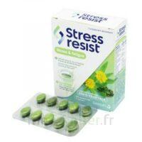 Stress Resist Comprimés Stress & Fatigue B/30 à TARBES