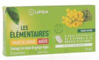 Les Elémentaires Sans Sucre Pastilles Maux De Gorge Aigus Menthe B/20 à TARBES