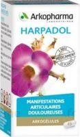 ARKOGELULES HARPAGOPHYTON Gélules Fl/150 à TARBES