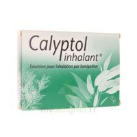 CALYPTOL INHALANT, émulsion pour inhalation par fumigation à TARBES