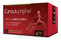 Santé Verte Circulymphe Triple Actions B/60 à TARBES