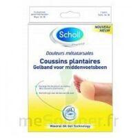 Scholl Coussin Plantaire Douleurs Métatarsales T2 à TARBES