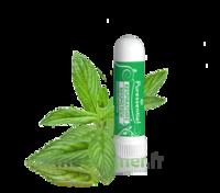Puressentiel Respiratoire Inhaleur Respiratoire aux 19 Huiles Essentielles - 1 ml à TARBES