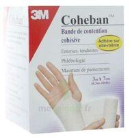 Coheban, Chair 3 M X 7 Cm à TARBES