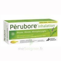 PERUBORE Caps inhalation par vapeur inhalation Plq/15 à TARBES