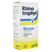 RHINOTROPHYL Solution pour pulvérisation nasale 1Fl/12ml à TARBES