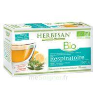 Herbesan Thym Bio Tisane Respiratoire 20 Sachets à TARBES