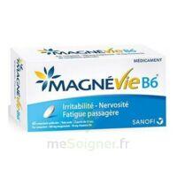 Magnevie B6 100 Mg/10 Mg Comprimés Pelliculés Plaq/60 à TARBES