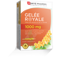 Forte Pharma Gelée royale 1000 mg Solution buvable 20 Ampoules/10ml à TARBES