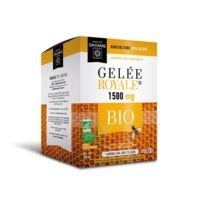 Dayang Gelée Royale 1500 Mg Bio 20 Ampoules à TARBES