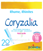 Boiron Coryzalia Solution buvable unidose B/20 à TARBES