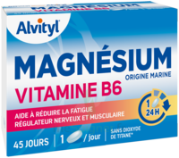 Govital Magnésium Vitamine B6 Comprimés B/45 à TARBES