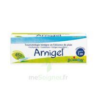 Boiron Arnigel Gel T(alumino-plastique)/45g à TARBES