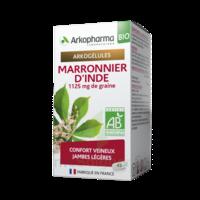 Arkogélules Marronnier D'inde Bio Gélules Fl/45 à TARBES