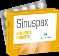 Lehning Sinuspax Comprimés à Croquer 3plq/20 à TARBES