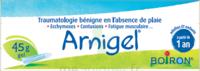 Boiron Arnigel Gel T/45g à TARBES